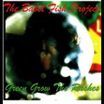 Green Grow The Rashes - Burns 250 Re-mix