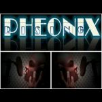 Son Of Man _ Pheonix Rising